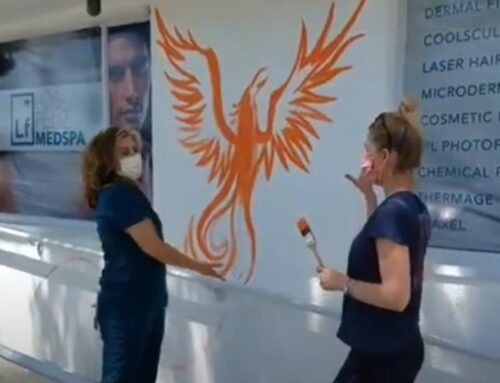 PHOENIX RISING, Alyssa Crosby Muralist, Los Angeles Med Spa